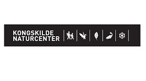 logo-kongskilde